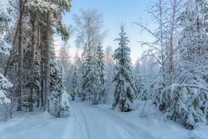 Бесплатные фото зима,закат,снег,лес,деревья,сугробы,дорога