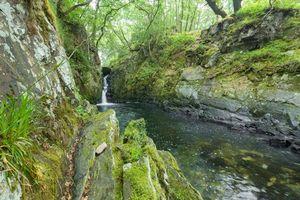 Бесплатные фото лес,скалы,речка,водопад,деревья,природа