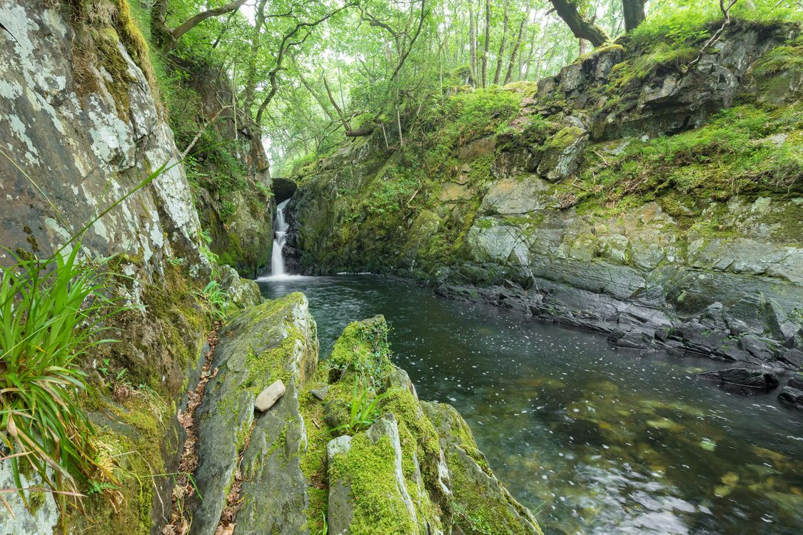 Фото бесплатно лес, скалы, речка, водопад, деревья, природа, природа