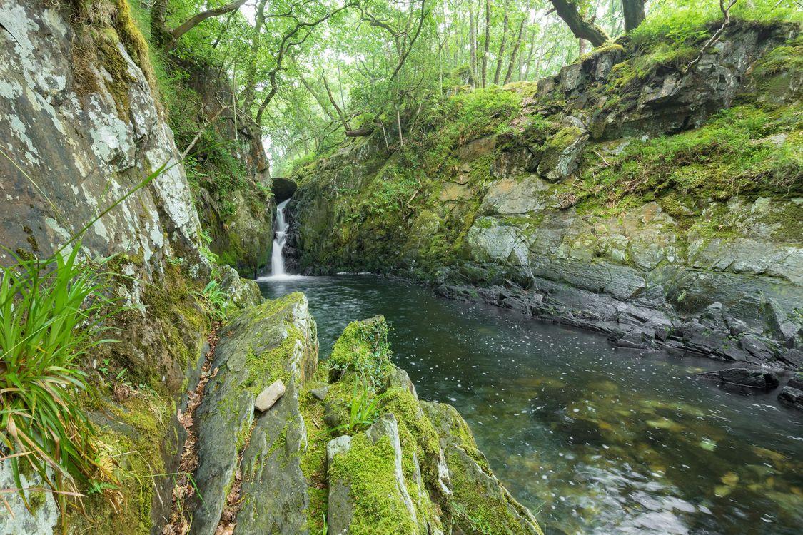 Фото бесплатно лес, скалы, речка - на рабочий стол