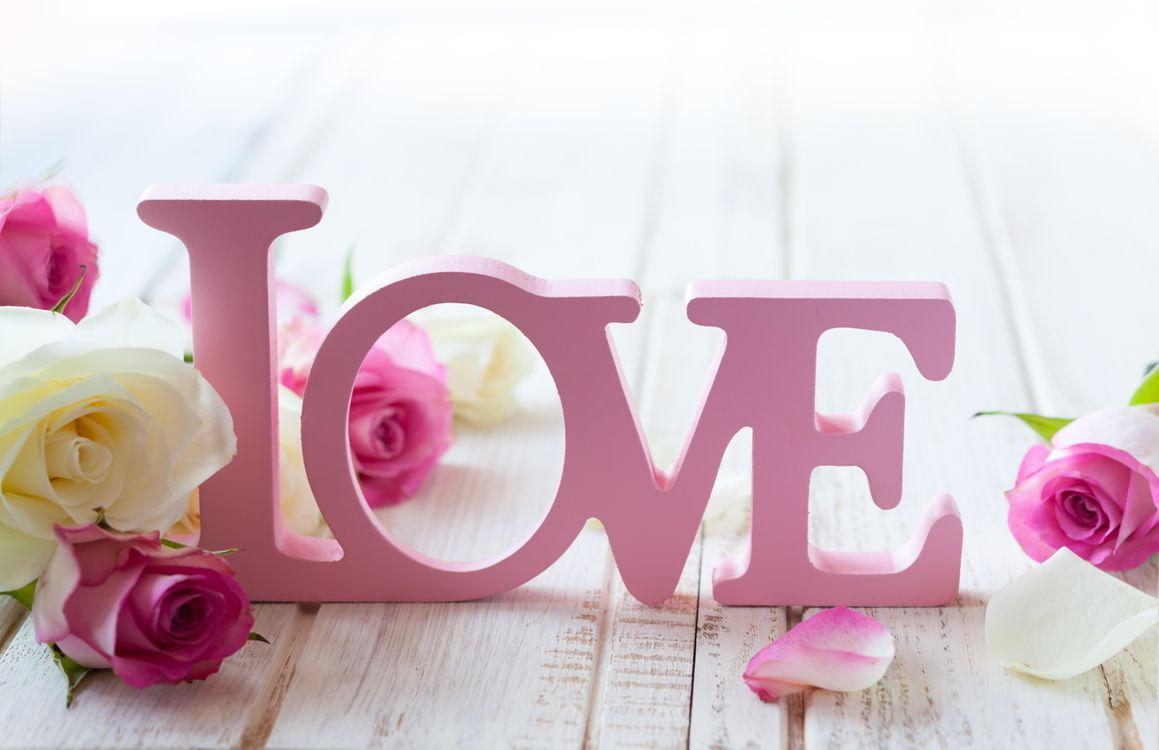 Фото бесплатно цветы, розы, валентинка - на рабочий стол