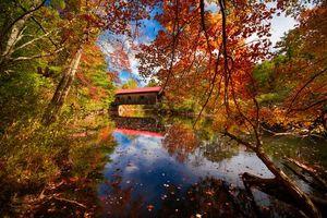 Бесплатные фото осень,река,лес,деревья,мост,пейзаж