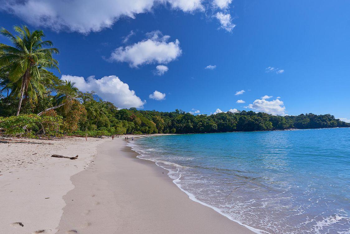 Фото бесплатно Playa Espadilla, Национальный парк Мануэль Антонио, море, берег, пляж, пейзаж, пейзажи