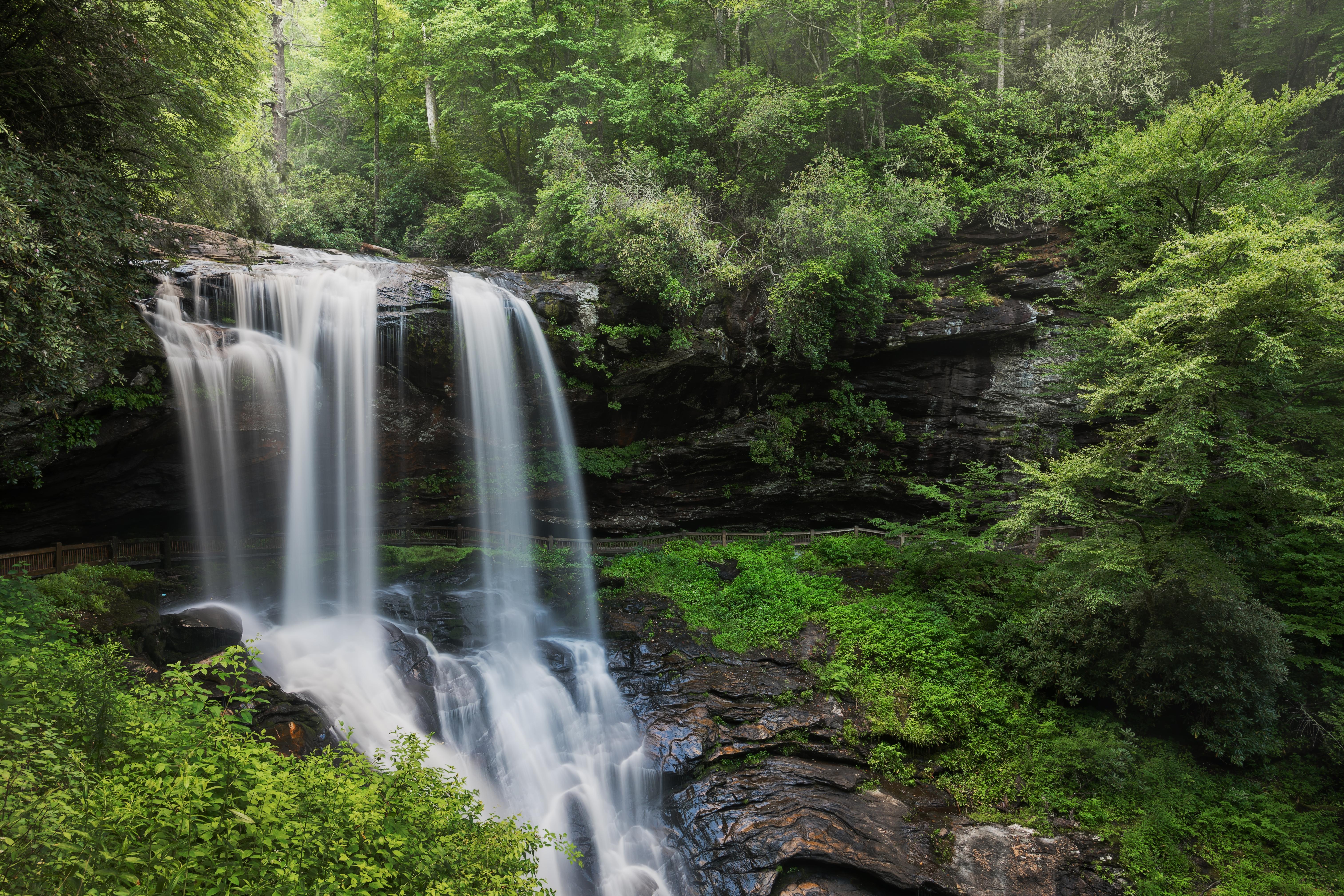 Обои лес, деревья, водопад, скалы