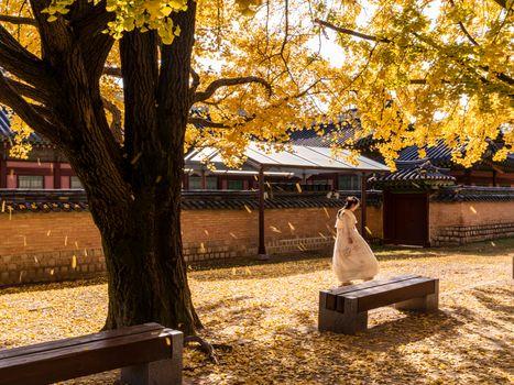 Photo free cities, Seoul, foliage