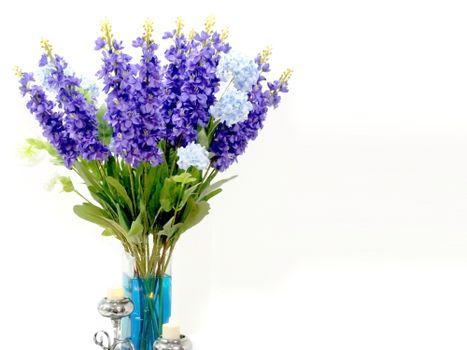 Фото бесплатно гиацинт, флора, ваза