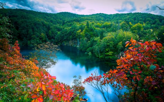 Фото бесплатно водопад, лес, вид с возвышенности