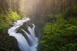 Фото бесплатно Sol Duc Falls, Olympic National Park, лес