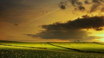 Бесплатные фото закат,поле,холмы,цветы,пейзаж