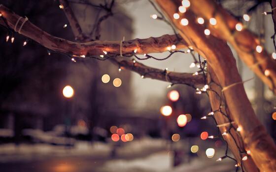 Фото бесплатно размытый фон, рождество, город