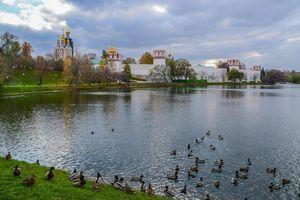 Бесплатные фото Москва,Богородице-Смоленский Новодевичий монастырь,Россия
