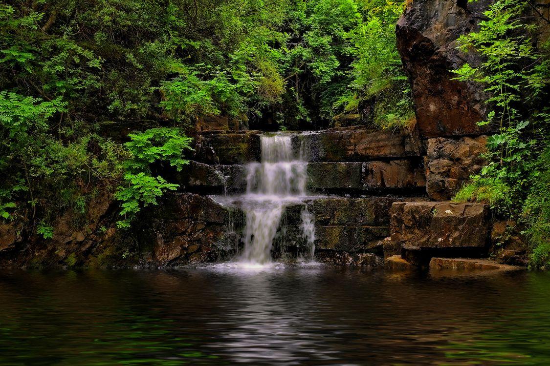 Фото бесплатно лес, деревья, водопад, скалы, водоём, природа, природа