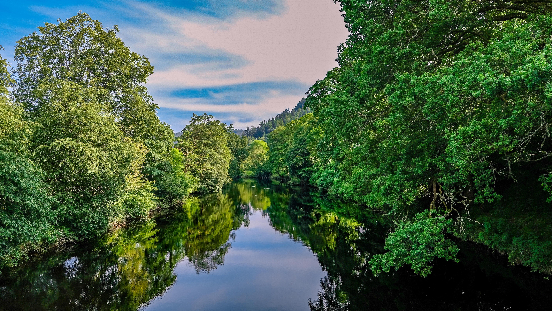День рождения, картинка с рекой и с лесом
