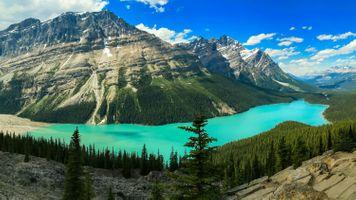Фото бесплатно пейзаж, горы, озеро Пейто