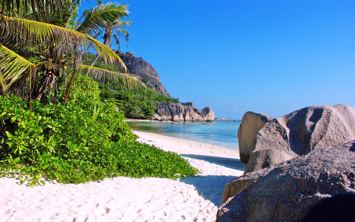 Фото бесплатно Сейшелы, тропики, море, пляж, остров, пальмы, отдых, пейзажи