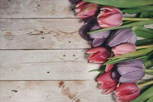 Фото бесплатно wood, цветы, букет