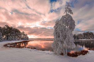 Зимний закат солнца · бесплатное фото
