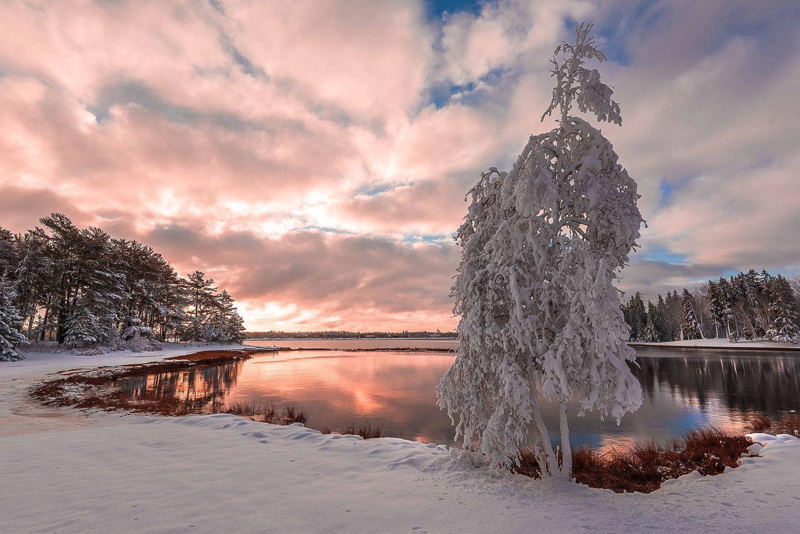 Зимний закат солнца · бесплатная заставка