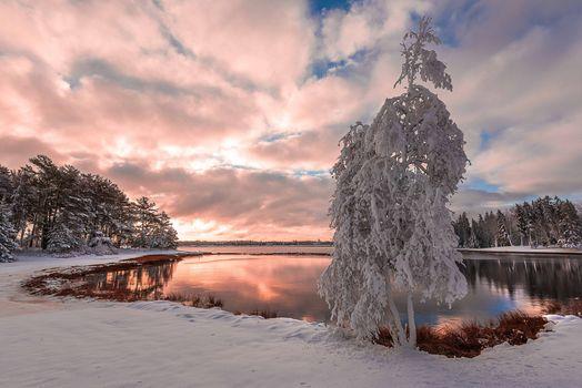 Зимний закат солнца