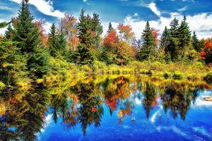 Заставки отражение, деревья, осень