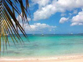 Обои тропики, море, пляж, яхты