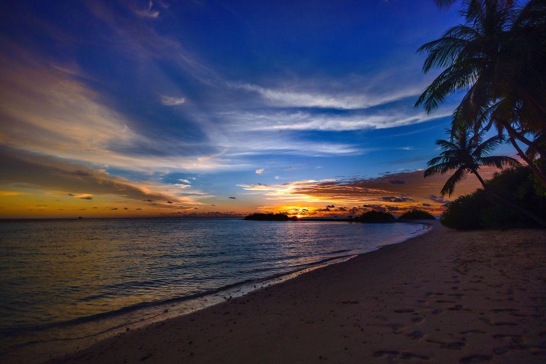 Фото бесплатно пляж, спокойные, облака, кокосовые пальмы, рассвет, сумерки, природа, океан, пальмы, рай, тихий, песок, живописный, живописный вид, море, пейзажи