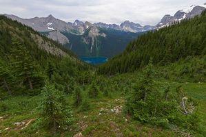 Обои Британская Колумбия, Канада, лес, трава, зеленый, Озеро, Marvel Lake, Провинциальный парк, пейзаж