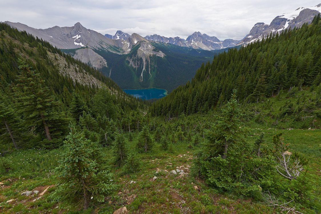 Фото бесплатно Британская Колумбия, Канада, лес, трава, зеленый, Озеро, Marvel Lake, Провинциальный парк, пейзаж, пейзажи