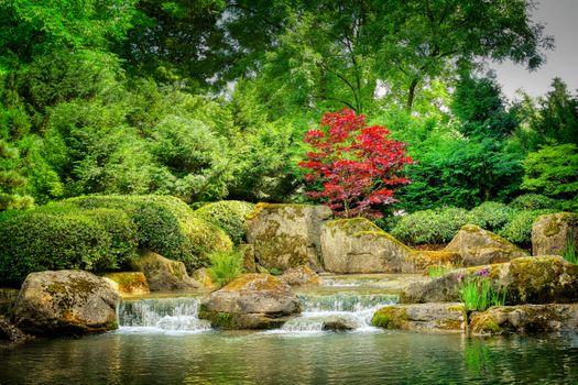 Photo free park, stream, rapid