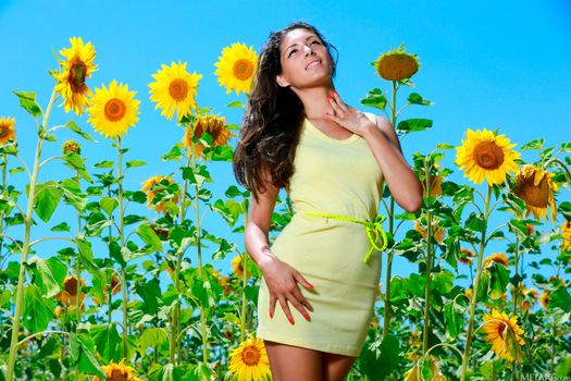Photo free young woman, pose, helianthus