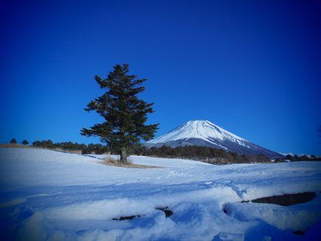 Фото бесплатно Фудзияма, Япония, зима