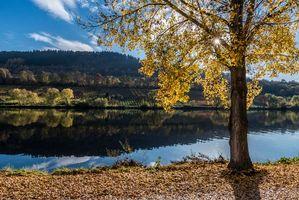 Заставки осень, река, деревья, пейзаж