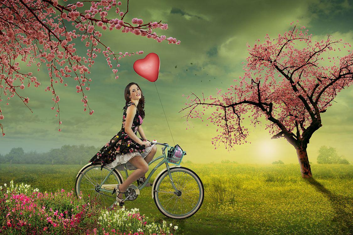 Фото бесплатно закат, поле, деревья, цветение, девушка, велосипед, улыбка, настроение, настроения