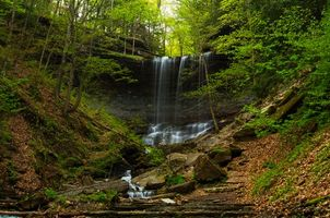 Бесплатные фото лес, деревья, водопад, камни, природа, пейзаж