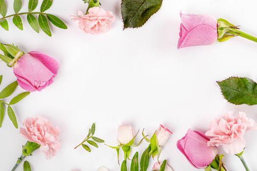 Фото бесплатно цветы, розы, розовый цвет