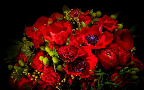Photo free bouquet, black background, flower