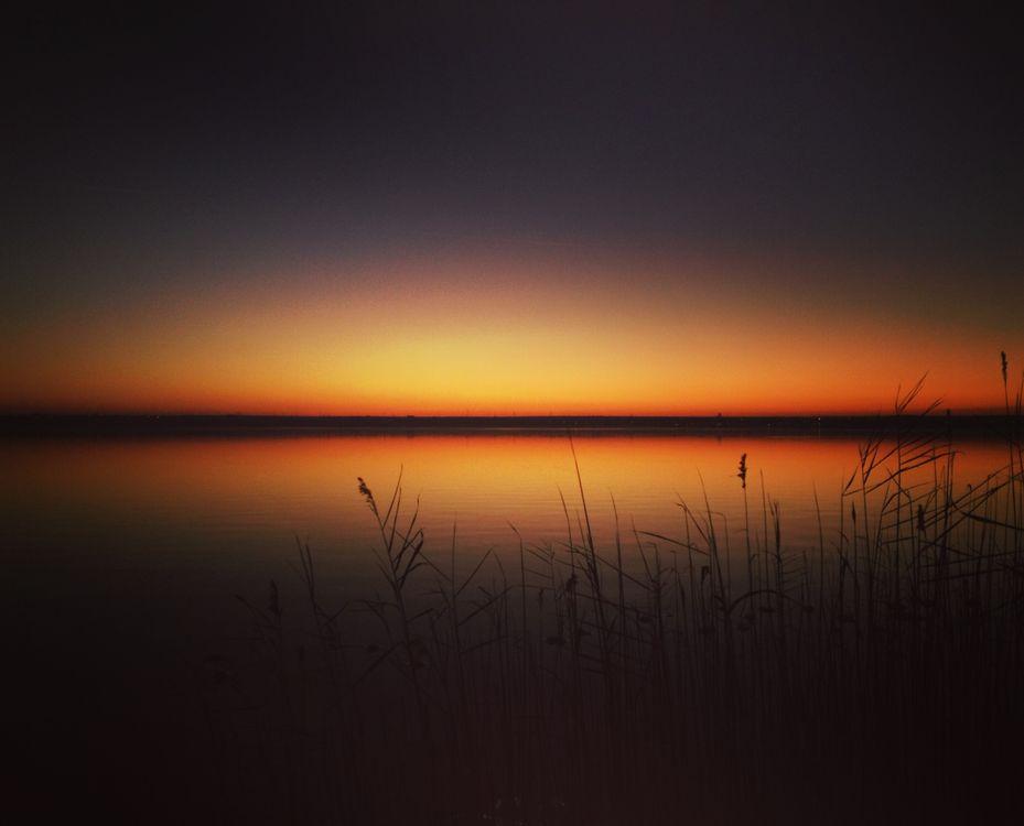 Фото бесплатно закат, горизонт, озеро, трава, sunset, skyline, lake, grass, пейзажи