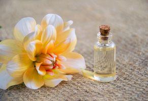 Бесплатные фото ароматическая терапия,косметическое масло,эфирное масло,цветок,рыжие,лепестки,альтернативный
