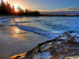 Фото бесплатно закат, море, берег, скала, деревья, пейзаж