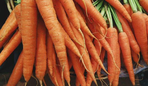 Photo free carrot, natural food, fresh vegetables