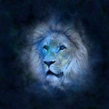 Фото бесплатно лев, пространство, цифровое искусство