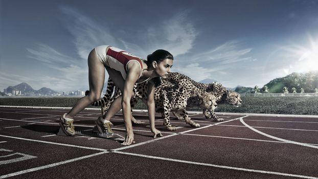 Photo free cheetahs, human positions, model