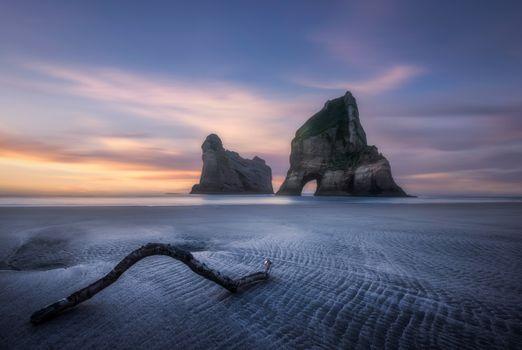 Фото бесплатно природа, побережье новой зеландии, скалистый берег