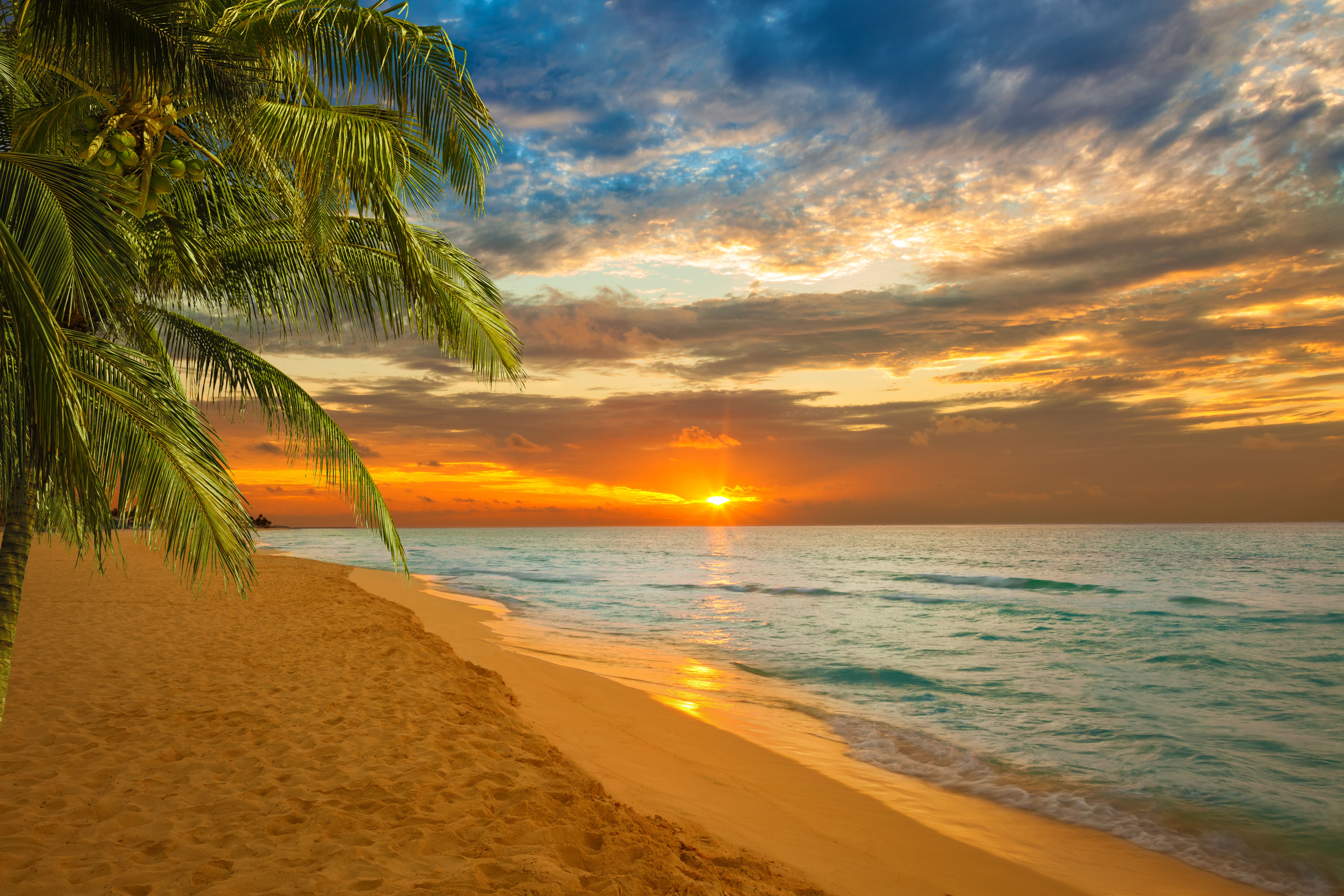 устройстве картинки морского пляжа на рабочий стол хромопластов отчасти