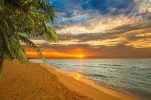 Бесплатные фото закат,пляж,Карибы,Пальма,море,волны,небо