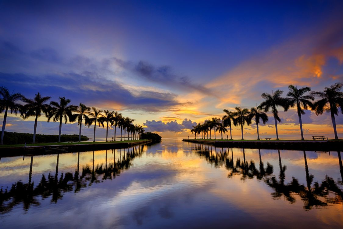 Фото бесплатно Miami, Майами, Флорида, закат, берег, вечернее небо, облака, сумерки, море, океан, небо, пальмы, отражение, пейзаж, пейзажи