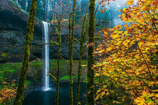 Заставки Fall Colors, Silver Fall State Park, Oregon