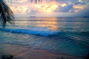 Бесплатные фото тропики, море, пляж, закат
