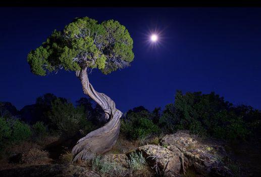 Фото бесплатно Gunnison National Park, Colorado, Black Canyon