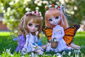Куклы бабочки · бесплатное фото